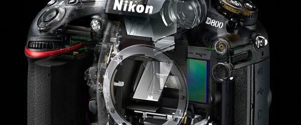 Nikon D800, l'ultima frontiera della perfezione