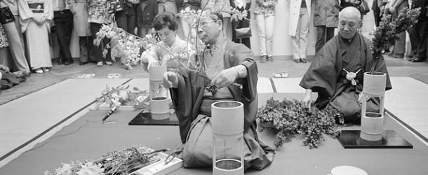 Ikebana, un'arte millenaria