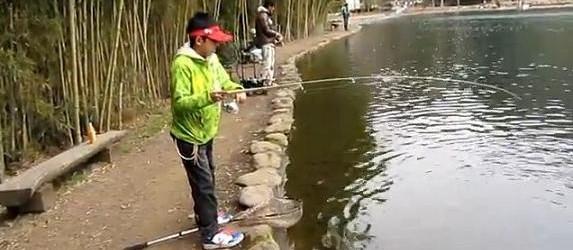 Canne da pesca, quali le migliori e quali i prezzi