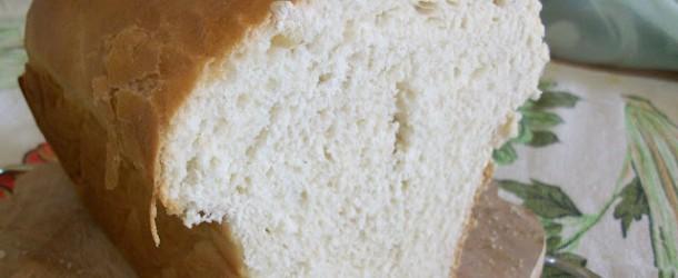 Macchina del pane, quali modelli scegliere